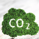 Green ecology CO2 icon on wooden background. 3d illustration.